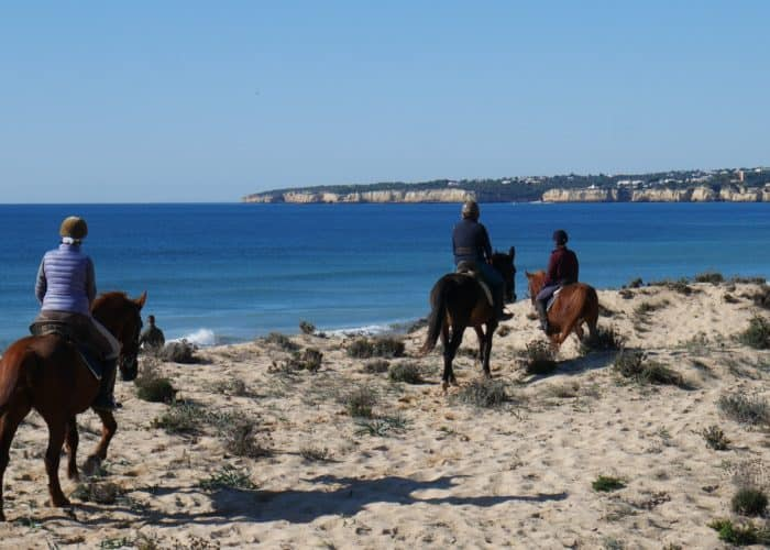 Horse Riding By The Beach