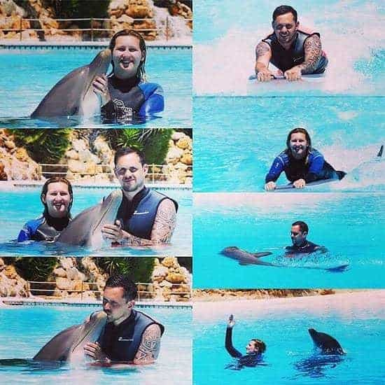 7 Pictures of Zoomarine Dolphin Emotions