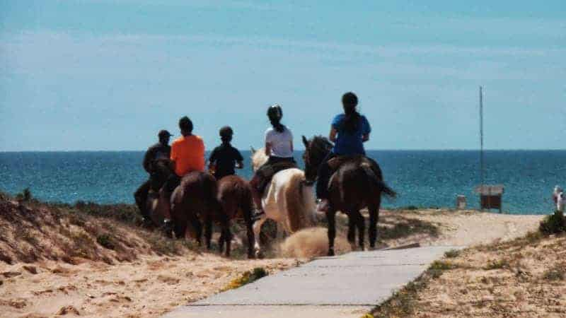 Group of people horse riding on the beach