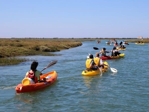 Group kayaking though the Ria Formosa.