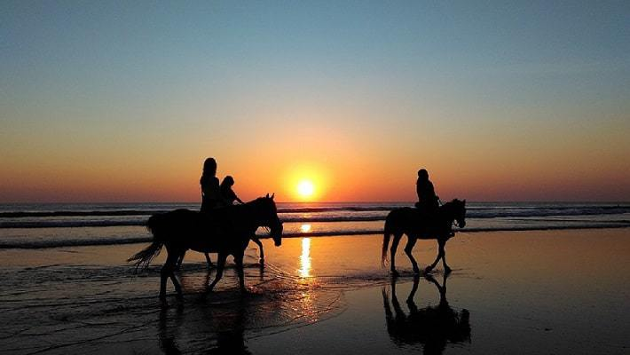 Three people riding horses in the beach at sunset